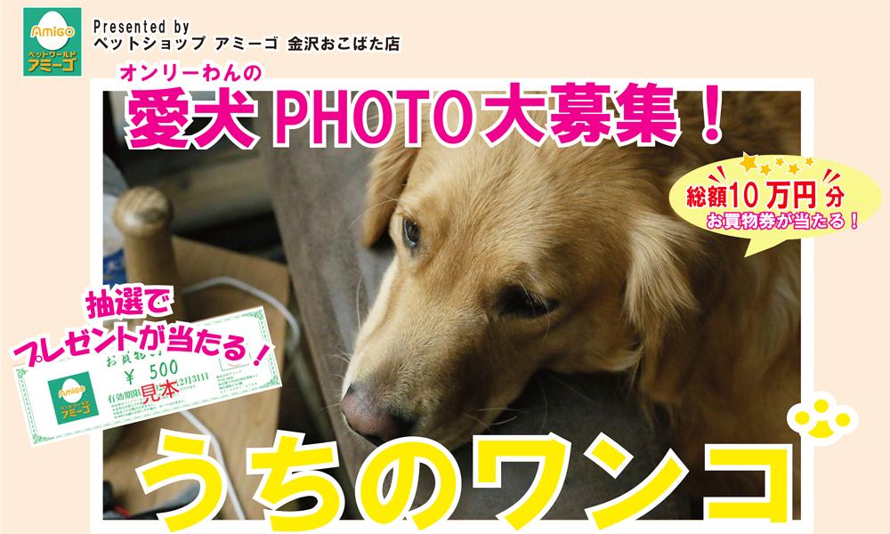 犬バナー2